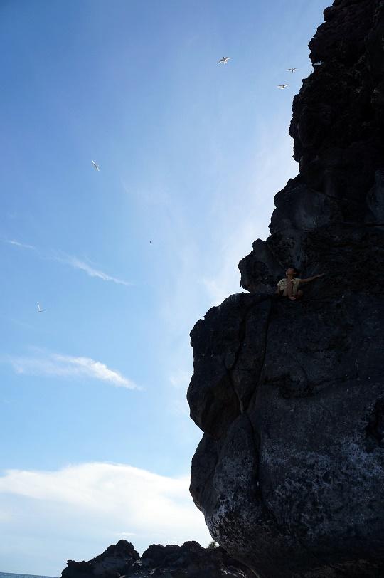 A boy climbing the rock o have a closer look at the birds