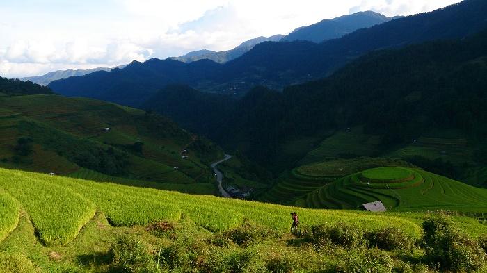 lan-hue-yen-bai-ruong-bac-thang-terraced-rice-field-2