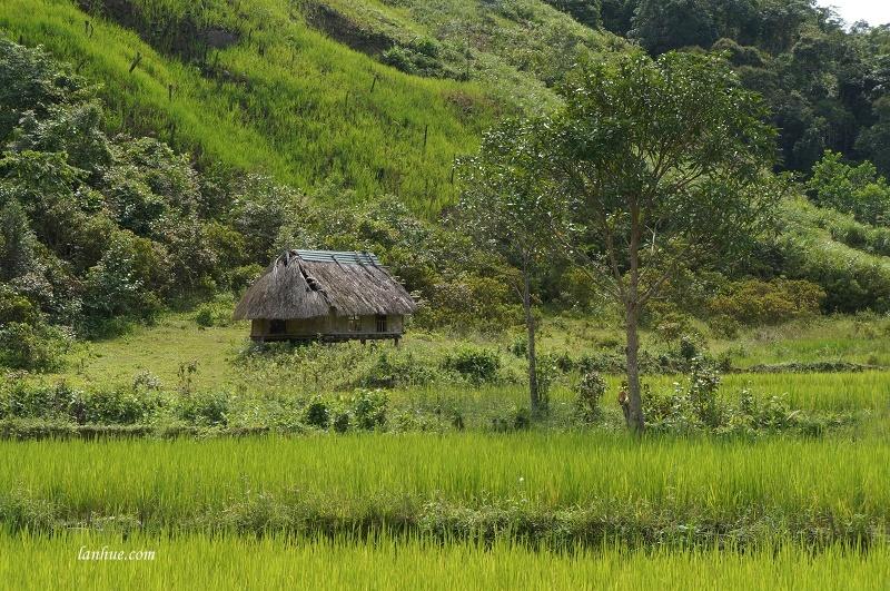 Ngôi nhà nhỏ trên núi cao