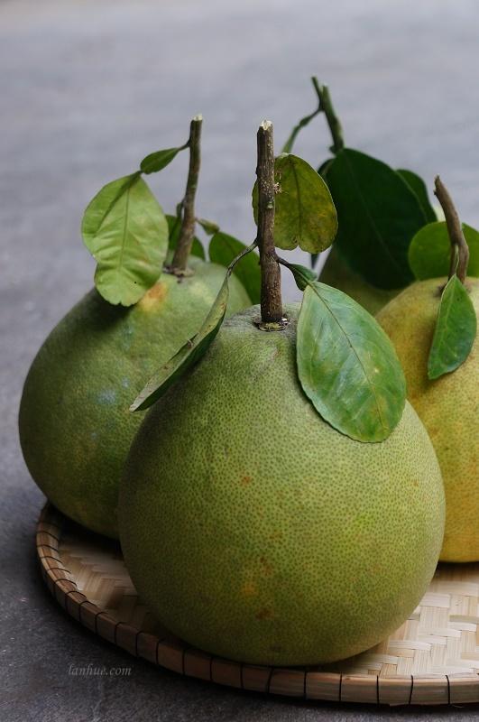 Bưởi (a kind of pomelo)