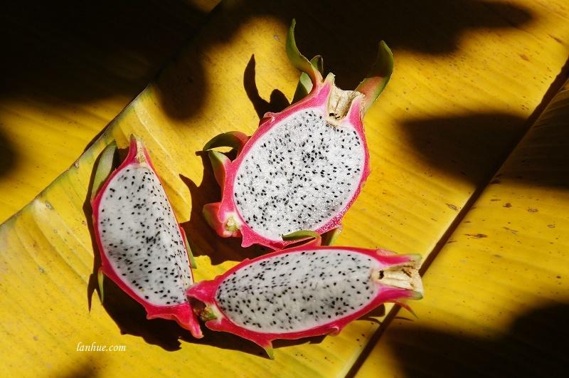 Thanh long (dragon fruit)