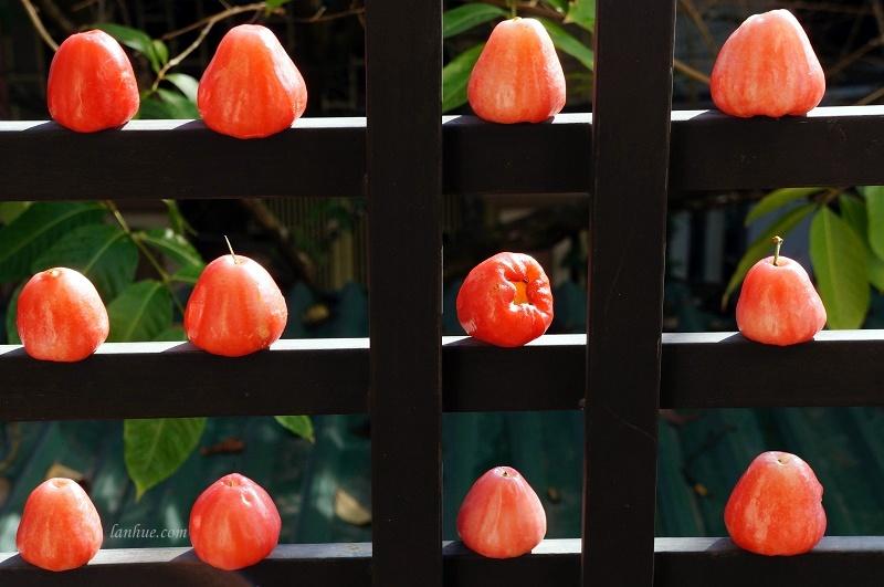 Đào / mận / roi / doi (rose apple)