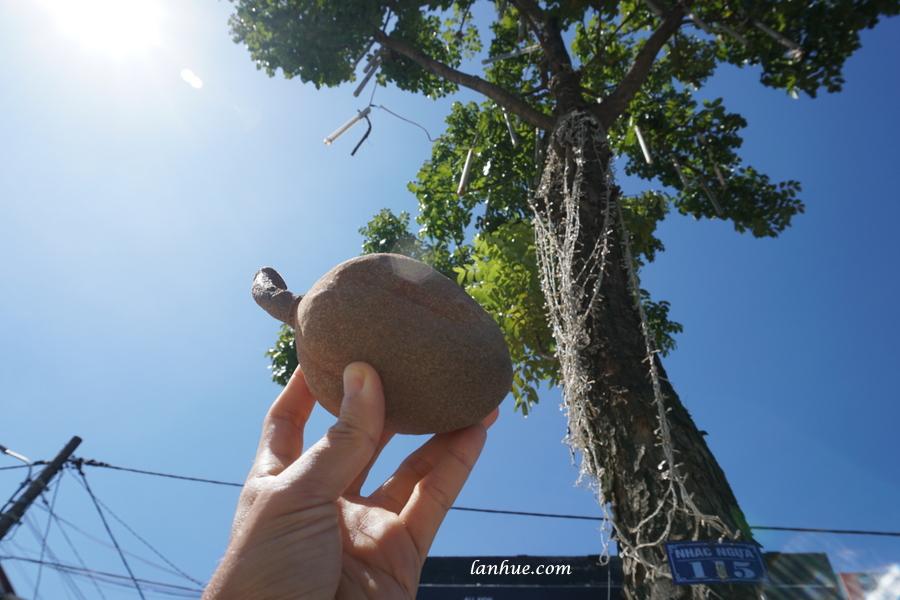 mahogany fruit